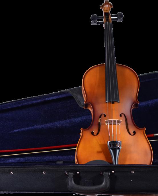 CA 100 Viola and Case