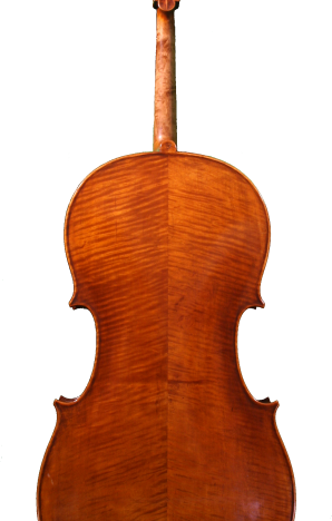 Petrov-cello-back