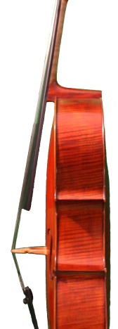 Zeler side cello