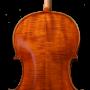 Pogany back cello