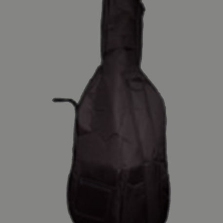 Padded Cello Bag
