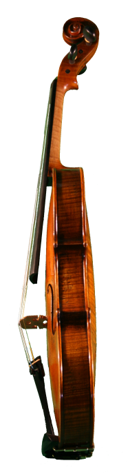 Petrov-Euro-Violin-Side
