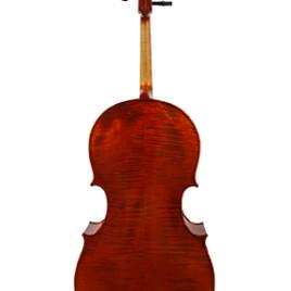 Nicolas Parola CP10N Cello