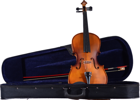 CA 100 Viola and Case
