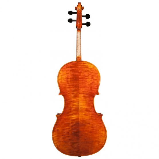 Nicolas Parola CP20N Cello Full Rear