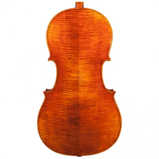 Nicolas Parola CP20N Cello Rear Body