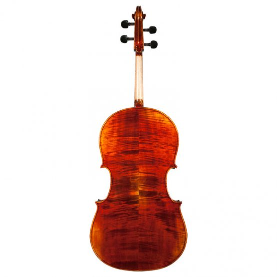 Nicolas Parola CP10N Cello Full Rear