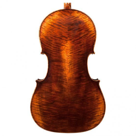 Nicolas Parola CP5 Cello Rear Body