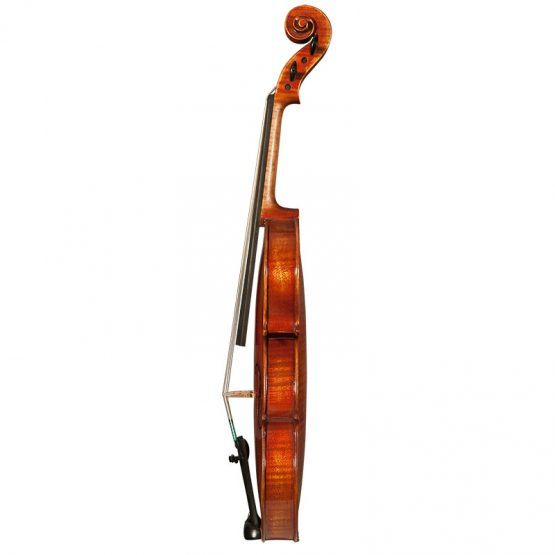 Nicolas Parola NP30E Violin Full Side