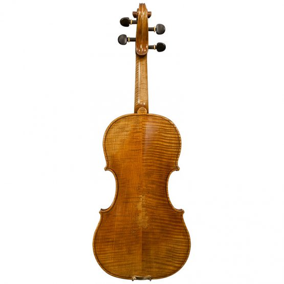Stefan Petrov Workshop Violin Full Rear