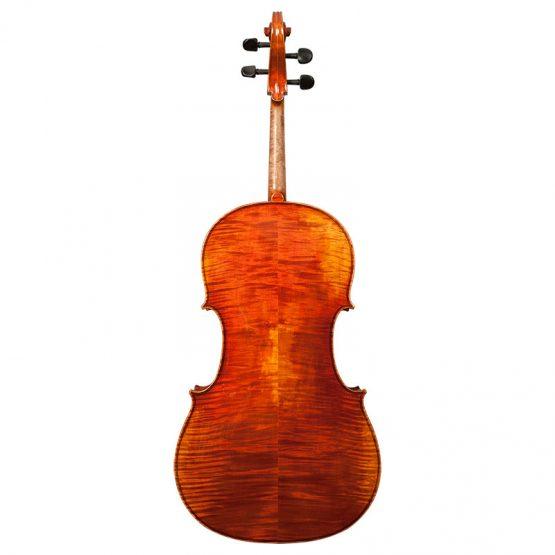 Stefan Petrov Trista Select Cello Full Rear