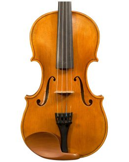 Stefan Petrov Trista Select Violin Front Body