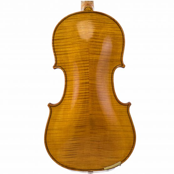 Lamy by JTL Violin back body