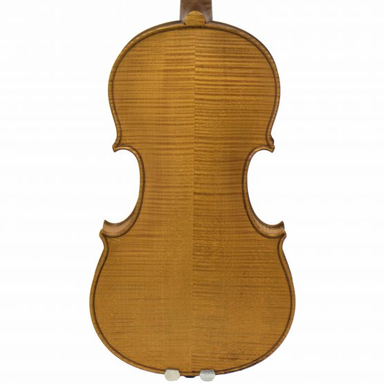 Paul Ritter Violin back body